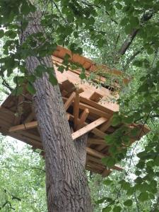 Tadashi Kawamata TREE HUTS IN BRUGES