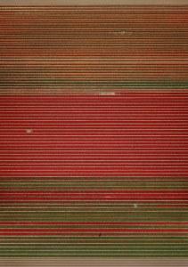 K20_Andreas Gursky - nicht abstrakt